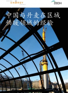 Publication-Chinese-1